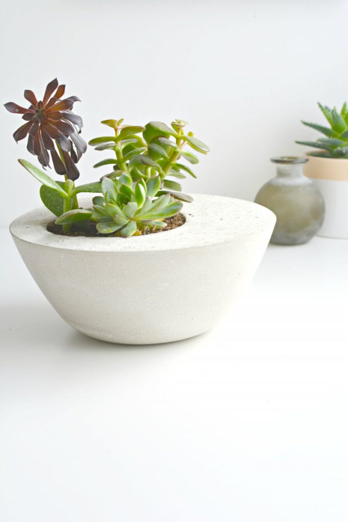 DIY concrete and cement gift ideas. DIY concrete planter by Burkatron